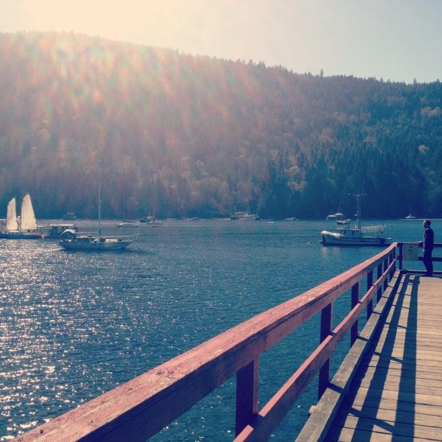 Salt Spring Dock