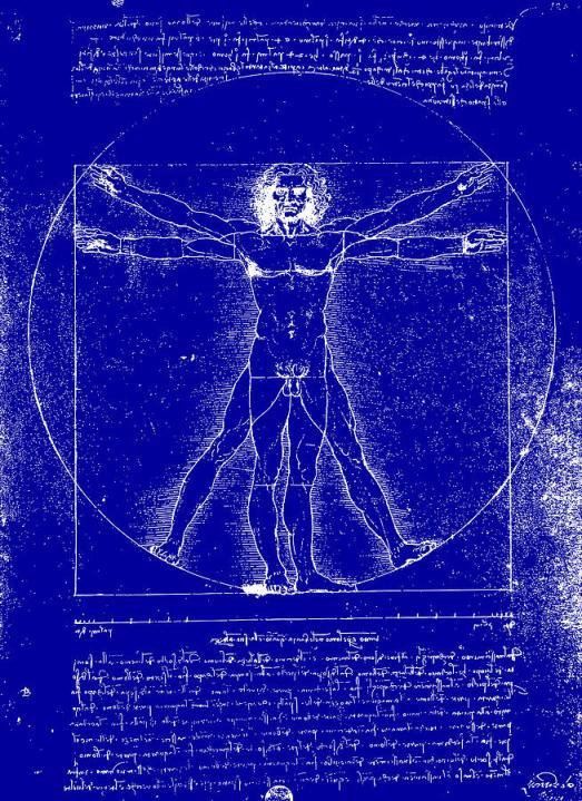 vitruvian blueprint da vinci